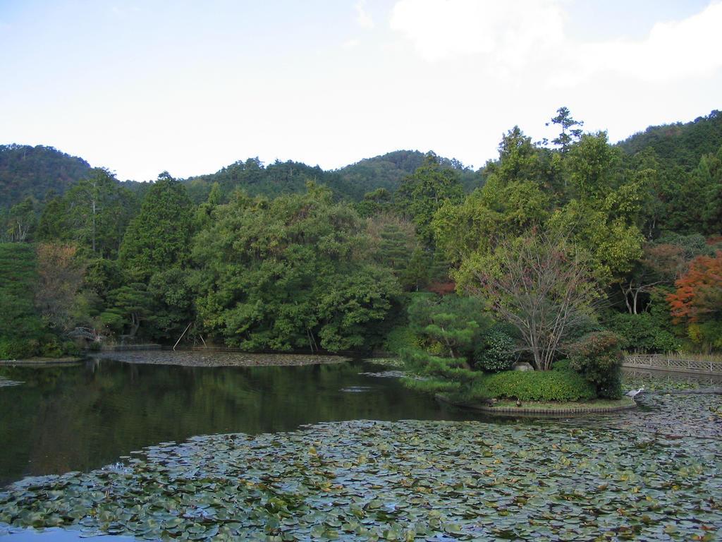 IMG 7834 Ryoanji lake